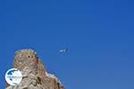 Pothia - Kalymnos town - Island of Kalymnos Photo 57 - Photo GreeceGuide.co.uk