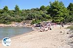 Chrousso beach near Paliouri | Kassandra Halkidiki | Greece  Photo 6 - Photo GreeceGuide.co.uk