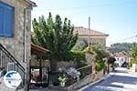 Agia Paraskevi | Kassandra Halkidiki | Greece  Photo 3 - Photo GreeceGuide.co.uk