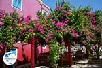 Megisti Kastelorizo - Kastelorizo island Dodecanese - Photo 129 - Photo GreeceGuide.co.uk
