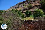 Hiking trail to Karthaia | Kato Meria | Kea (Tzia) 27 - Photo GreeceGuide.co.uk