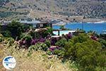 Koundouros | Kea (Tzia) | Greece  Photo 29 - Photo GreeceGuide.co.uk