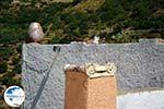 Ioulida (Ioulis of Chora) | Kea (Tzia) | Greece  Photo 47 - Photo GreeceGuide.co.uk