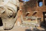 Kiato - Sykiona | Corinth  Peloponnese | Photo 3 - Photo Marcel Fens