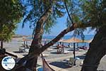 Agios Fokas - Island of Kos -  Photo 13 - Photo GreeceGuide.co.uk