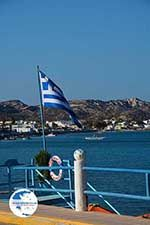Kamari - Island of Kos - Greece  Photo 15 - Photo GreeceGuide.co.uk