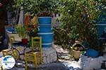 Kos town - Island of Kos - Greece  Photo 4 - Photo GreeceGuide.co.uk