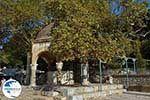 Kos town - Island of Kos - Greece  Photo 49 - Photo GreeceGuide.co.uk