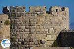 Kos town - Island of Kos - Greece  Photo 68 - Photo GreeceGuide.co.uk