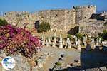 Kos town - Island of Kos - Greece  Photo 69 - Photo GreeceGuide.co.uk