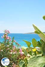 Koufonissi - Koufonissia islands | Cyclades | Greece  | nr 139 - Photo GreeceGuide.co.uk