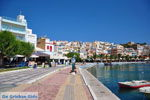 Sitia | Lassithi Crete | Greece  Photo 16 - Photo GreeceGuide.co.uk