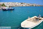 Sitia | Lassithi Crete | Greece  Photo 24 - Photo GreeceGuide.co.uk