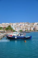 Sitia | Lassithi Crete | Greece  Photo 25 - Photo GreeceGuide.co.uk