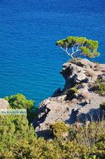Agia Fotia | Lassithi Crete | Photo 9 - Photo GreeceGuide.co.uk