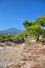 Agia Fotia   Lassithi Crete   Photo 19 - Photo GreeceGuide.co.uk