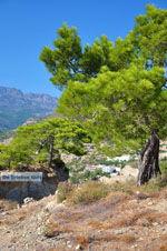 Agia Fotia | Lassithi Crete | Photo 20 - Photo GreeceGuide.co.uk