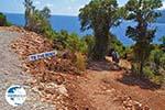 Agiofili Lefkada - Ionian Islands - Photo 1 - Photo GreeceGuide.co.uk