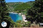 beach Spartochori - Meganisi island near Lefkada island - Photo Meganisi (island) 90 - Photo GreeceGuide.co.uk