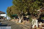 Agia Marina - Island of Leros - Dodecanese islands Photo 33 - Photo GreeceGuide.co.uk