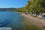 Alinda - Island of Leros - Dodecanese islands Photo 20 - Photo GreeceGuide.co.uk
