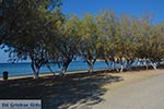 Gourna - Island of Leros - Dodecanese islands Photo 7 - Photo GreeceGuide.co.uk