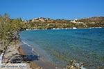 Blefoutis beach Partheni - Island of Leros - Dodecanese islands Photo 16 - Photo GreeceGuide.co.uk