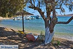 Blefoutis beach Partheni - Island of Leros - Dodecanese islands Photo 22 - Photo GreeceGuide.co.uk