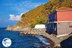 Eftalou Lesbos   Greece   Greece  11 - Photo GreeceGuide.co.uk
