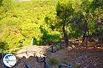 Near Waterfalls Pesas | Lesbos Greece | Greece  19 - Photo GreeceGuide.co.uk