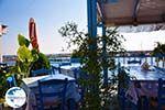 Plomari | Lesbos Greece | Greece  23 - Photo GreeceGuide.co.uk