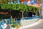 Plomari | Lesbos Greece | Greece  29 - Photo GreeceGuide.co.uk