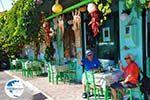 Plomari | Lesbos Greece | Greece  56 - Photo GreeceGuide.co.uk