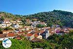 Plomari | Lesbos Greece | Greece  64 - Photo GreeceGuide.co.uk