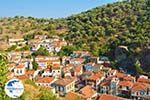 Plomari | Lesbos Greece | Greece  69 - Photo GreeceGuide.co.uk