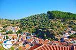 Plomari | Lesbos Greece | Greece  73 - Photo GreeceGuide.co.uk