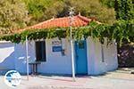 Petra Lesbos | Greece | Greece  32 - Photo GreeceGuide.co.uk