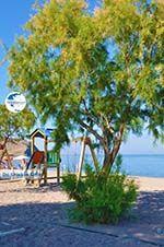 Anaxos Lesbos | Greece | Greece  8 - Photo GreeceGuide.co.uk