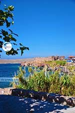 Sigri Lesbos   Greece   Greece  021 - Photo GreeceGuide.co.uk