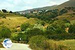 Dafni Limnos (Lemnos) | Greece | Photo 1 - Photo GreeceGuide.co.uk