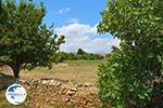 Livadochori Limnos (Lemnos) | Greece | Photo 1 - Photo GreeceGuide.co.uk