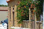Livadochori Limnos (Lemnos) | Greece | Photo 9 - Photo GreeceGuide.co.uk