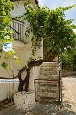 Sardes Limnos (Lemnos) | Greece | Photo 10 - Photo GreeceGuide.co.uk
