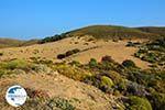 Amothines woestijn near Katalakos Limnos (Lemnos) | Photo 14 - Photo GreeceGuide.co.uk