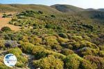 Amothines woestijn near Katalakos Limnos (Lemnos) | Photo 16 - Photo GreeceGuide.co.uk