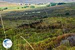 Road to Kavirio Limnos (Lemnos) | Greece Photo 41 - Photo GreeceGuide.co.uk