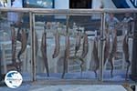 Adamas Milos | Cyclades Greece | Photo 27 - Photo GreeceGuide.co.uk
