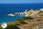 Mandrakia Milos | Cyclades Greece | Photo 50 - Photo GreeceGuide.co.uk