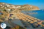 Elia beach Mykonos - GreeceGuide.co.uk photo 15 - Photo GreeceGuide.co.uk