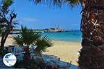 Agia Anna Naxos - Cyclades Greece - nr 39 - Photo GreeceGuide.co.uk